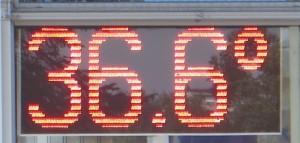 36.6 (c) Thilo Bock
